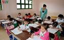 Vụ cắt hợp đồng hơn 1.400 giáo viên Cà Mau: Nỗi lo người mất việc