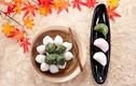 Người Hàn Quốc ăn gì trong dịp Trung thu?