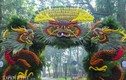 Triển lãm hoa, cây cảnh trăm triệu thu hút người dân Hà Nội