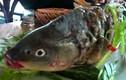 Kinh dị món cá âm dương gây tranh cãi của Trung Quốc