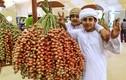 Loại quả đặc biệt được người giàu ở Dubai ăn mỗi ngày