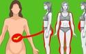 10 mẹo quan trọng kiểm soát insulin để giảm cân, giữ dáng đẹp
