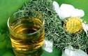 Những thảo dược chữa mất ngủ hiệu quả nhanh chóng