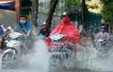 Dự báo thời tiết hôm nay 24/6: Miền Bắc mưa dông, giảm nhiệt