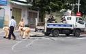 57 người thiệt mạng vì tai nạn giao thông trong 3 ngày nghỉ lễ