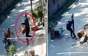 Video: Tên trộm tham lam bị 'nghiệp quật'