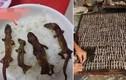 """""""Khiếp vía"""" đặc sản thằn lằn khô bốc mùi tanh ngòm của Indonesia"""