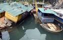Lô tàu trăm tỉ của Vinashin bỏ hoang bôi xấu Hạ Long