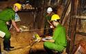 Xem xét khởi tố vụ án sập hầm thủy điện Đạ Dâng