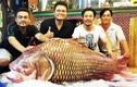 Thủy quái thành món lẩu giá trăm triệu của đại gia Việt