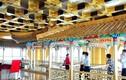 Khách sạn hơn 70 tầng dát vàng gây chấn động Trung Quốc