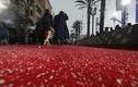 Sao tạo dáng giữa mưa đá trên thảm đỏ MTV Movie & TV Awards