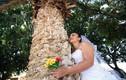 Chuyện lạ hôm nay: Người người kết hôn với cây vì điều này