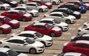 Video: Ô tô hưởng thuế 0% đổ về, giảm giá tới 100 triệu đồng/xe