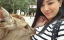Chụp ảnh thân mật với hươu, gái trẻ bị sàm sỡ công khai