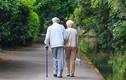Cụ ông mắc chứng Alzheimer khiến cả viện dưỡng lão náo loạn