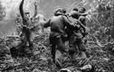 """Ảnh """"đắt giá"""" về chiến tranh Việt Nam trên NYTimes"""