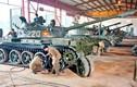 Việt Nam mong muốn Nga giúp nâng cấp vũ khí cũ