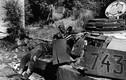 Ảnh độc: Những cỗ xe tăng trên chiến trường CTTG 2