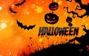 Những con số ấn tượng về lễ hội Halloween