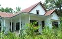 Cảnh đáng sợ cỏ dại phủ kín hàng loạt biệt thự bỏ hoang ở Kon Tum