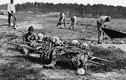 Góc ảnh ám ảnh về sự chết chóc trong Nội chiến Mỹ