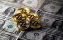 Tỷ phú Warren Buffett: Bitcoin không có giá trị, hãy tránh xa!
