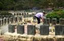 Xây nghĩa trang Yên Trung 1.400 tỉ đồng: Lãng phí, chưa cần thiết!