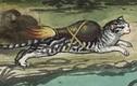 Kinh ngạc những chiến thuật quân sự kỳ lạ của người xưa