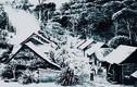 Bí ẩn vụ mất tích hơn 600 người dân ở Brazil 1923
