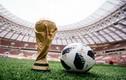 Bí mật thú vị về tên gọi của trái bóng World Cup 2018