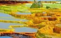 """Sự thật hãi hùng tại """"cánh đồng vàng"""" kỳ lạ nhất hành tinh"""