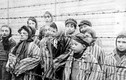 Hãi hùng thí nghiệm triệt sản phụ nữ của phát xít Đức