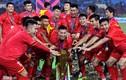 Trận tranh cúp Việt Nam - Hàn Quốc không thể tổ chức trong năm 2019