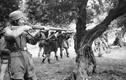 Khủng khiếp cuộc thảm sát đẫm máu tháng 3/1945 của Đức quốc xã