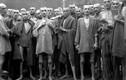 Hãi hùng thí nghiệm triệt sản vô nhân tính của Đức quốc xã