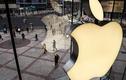 13 tuổi, hacker 2 lần đột nhập hệ thống Apple để xin việc