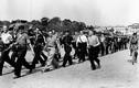 Chuyện lạ người lính Pháp bắt giữ 80 lính phát xít Đức