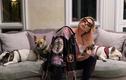 Lady Gaga treo thưởng hơn 11 tỷ đồng tìm hai chú chó cưng bị trộm