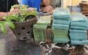 Lan đột biến 250 tỷ ở Quảng Ninh: Chưa chuyển tiền hay chiêu… thổi giá?