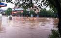 """Thái Nguyên: Đường xá """"biến thành sông"""", xe ngập ngụa trong nước"""