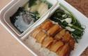 Nguy cơ tiềm ẩn khi mang cơm hộp ăn trưa tại công sở