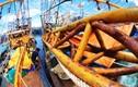 27 tỉnh ven biển rà soát tàu vỏ thép đóng mới