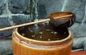 Nước mưa: ngỡ sạch mà bẩn và nguy hiểm đến không ngờ