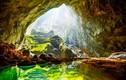 Mãn nhãn loạt báu vật vô giá ở Vườn quốc gia Phong Nha - Kẻ Bàng