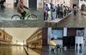 Triều cường tấn công, thành phố Venice chìm trong biển nước