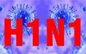 Thêm 1 ca cúm H1N1 tử vong - cần đề cao việc phòng chống lây lan