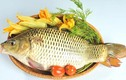 Người mắc các bệnh này ăn cá chép có thể gây độc chết người