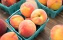 Người có dạ dày yếu tốt nhất nên tránh ăn 4 loại trái cây này