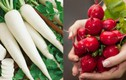 Những loại rau củ nên ăn nhất trong mùa đông